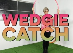Wedgies: Breakthroughs, Transitions & Variations